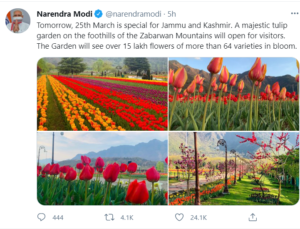 Tulip Festival 2021
