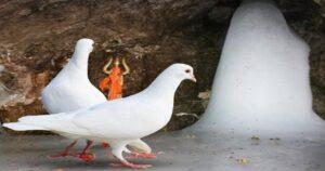 amarnath yatra planning